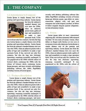 0000101648 Word Template - Page 3