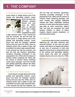 0000101656 Word Template - Page 3