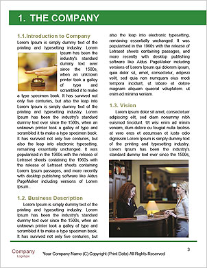 0000101662 Word Template - Page 3