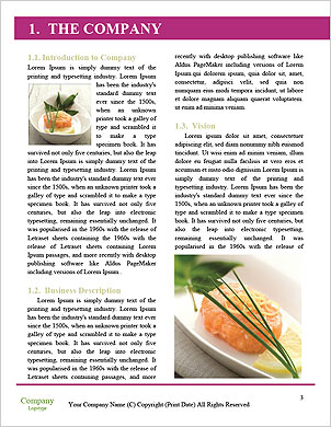 0000101671 Word Template - Page 3