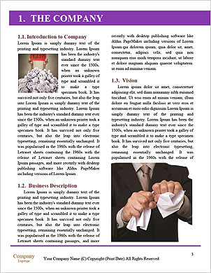 0000101680 Word Template - Page 3