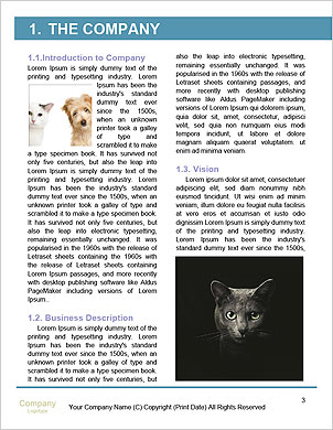 0000101697 Word Template - Page 3