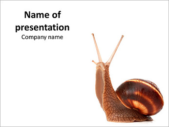 Cute Snail PowerPoint Template