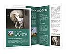 0000011424 Brochure Templates