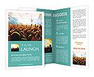 0000011440 Brochure Templates