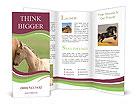 0000011441 Brochure Templates