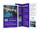 0000011444 Brochure Templates