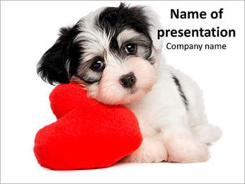Puppy with Red Heart PowerPoint Template