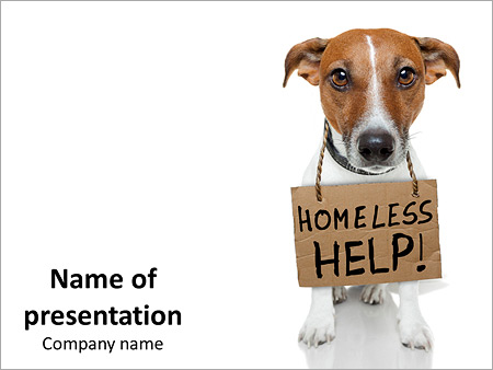 Help homeless dog powerpoint template backgrounds id 0000011457 help homeless dog powerpoint template toneelgroepblik