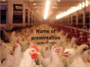 Big Chicken Farm PowerPoint šablony
