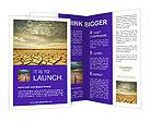 0000011616 Brochure Templates