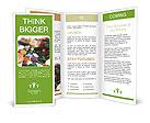 0000011660 Brochure Templates