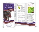 0000011743 Brochure Templates