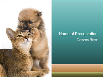 Puppy Playing With Cat PowerPoint Template