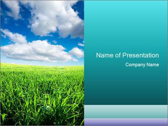 Idyllic Meadow PowerPoint Template
