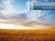 Wheath Growth PowerPoint Templates