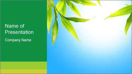 Spring Freshness PowerPoint Template