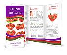 0000012178 Brochure Templates