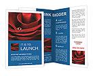 0000012205 Brochure Templates