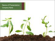 Organic Garden PowerPoint Templates