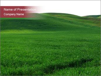 Beautiful Green Meadow PowerPoint Template