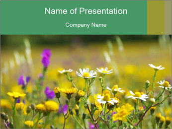 Wild Glowers on the Meadow PowerPoint Template