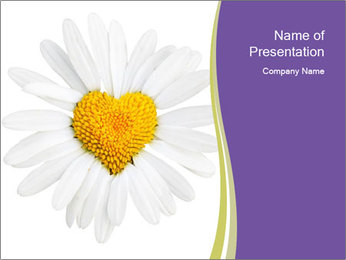 White Daisy with Yellow Heart PowerPoint Template