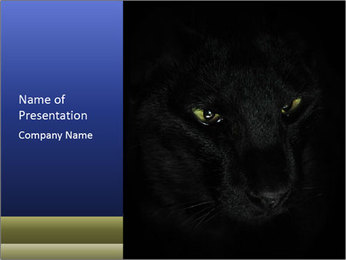 Black Panther PowerPoint Template