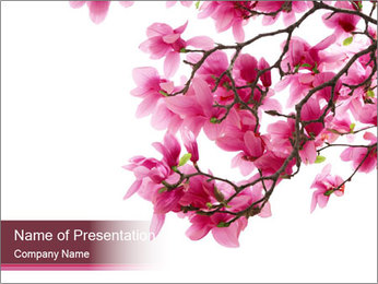 Pink Magnolia PowerPoint Template