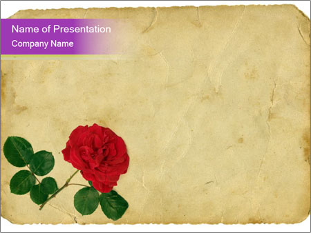 vintage rose on old paper powerpoint template & backgrounds id, Powerpoint templates