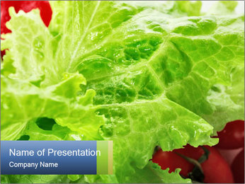 Healthy Lettuce PowerPoint Template