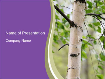 Trunk of Birch Tree PowerPoint Template