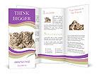 0000013061 Brochure Templates