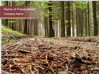 Walking in the Wild Forest PowerPoint Template