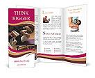 0000013200 Brochure Templates