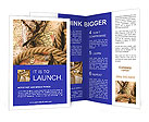 0000013219 Brochure Templates