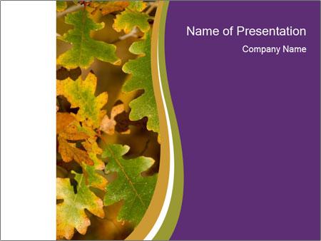november powerpoint template smiletemplates com
