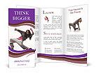 0000013316 Brochure Templates