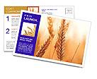0000013334 Postcard Templates