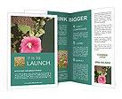 0000013336 Brochure Templates