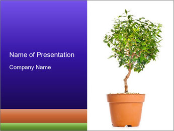 Green Decorative Tree in Brown Pot PowerPoint Template
