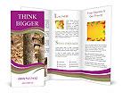 0000013347 Brochure Templates