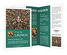 0000013389 Brochure Templates