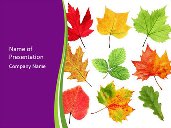 Dried Colorful Leaves PowerPoint Template