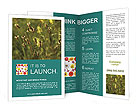 0000013612 Brochure Templates