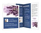 0000013632 Brochure Templates