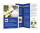 0000013687 Brochure Templates