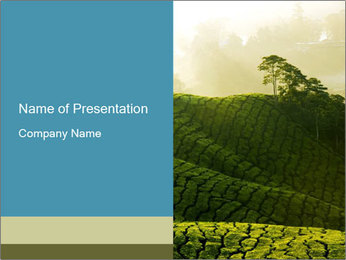 Misty Tea Farm in Malaysia PowerPoint Template