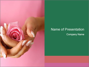 Pink Rose in Woman's Hand PowerPoint Template
