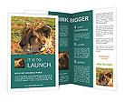 0000013800 Brochure Templates
